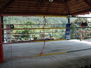 1.1263734358.ring de muay thai 300x225 1.1263734358.ring de muay thai