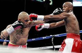 images mayweather vs cotton | krank systems brooklyn weight loss gym