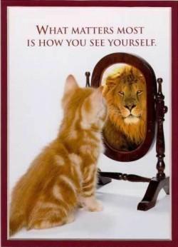 mirror self reflection image 250x346 mirror self reflection image