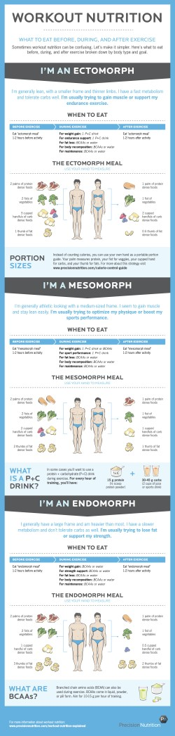 Workout Nutrition Infographic 250x1046 Workout Nutrition Infographic